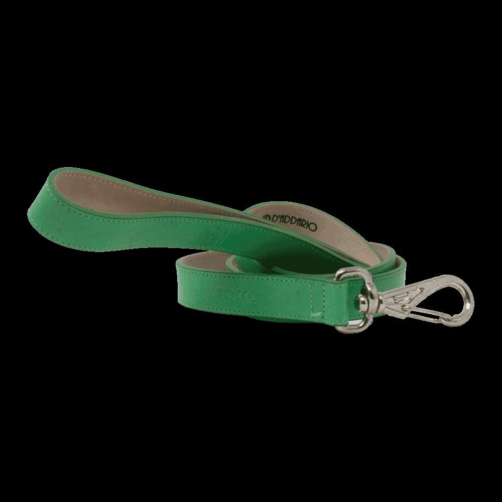 Correa para perro D'Addario Rocco color verde primavera de talla pequeña