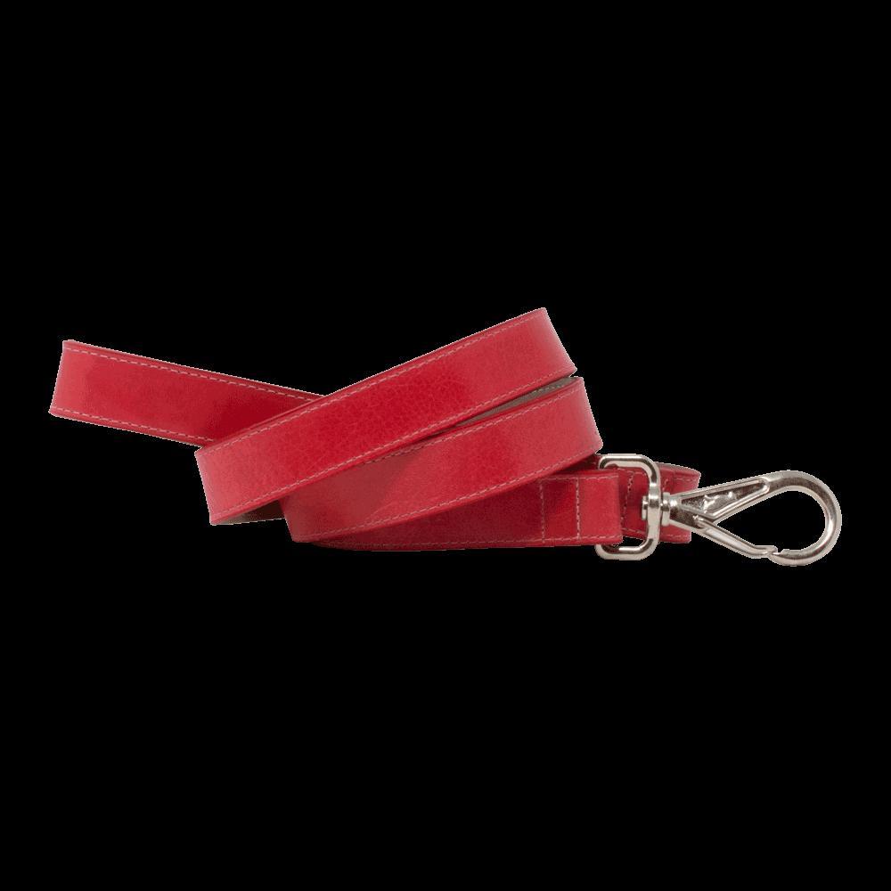 Correa para perro D'Addario Rocco color rojo de talla pequeña