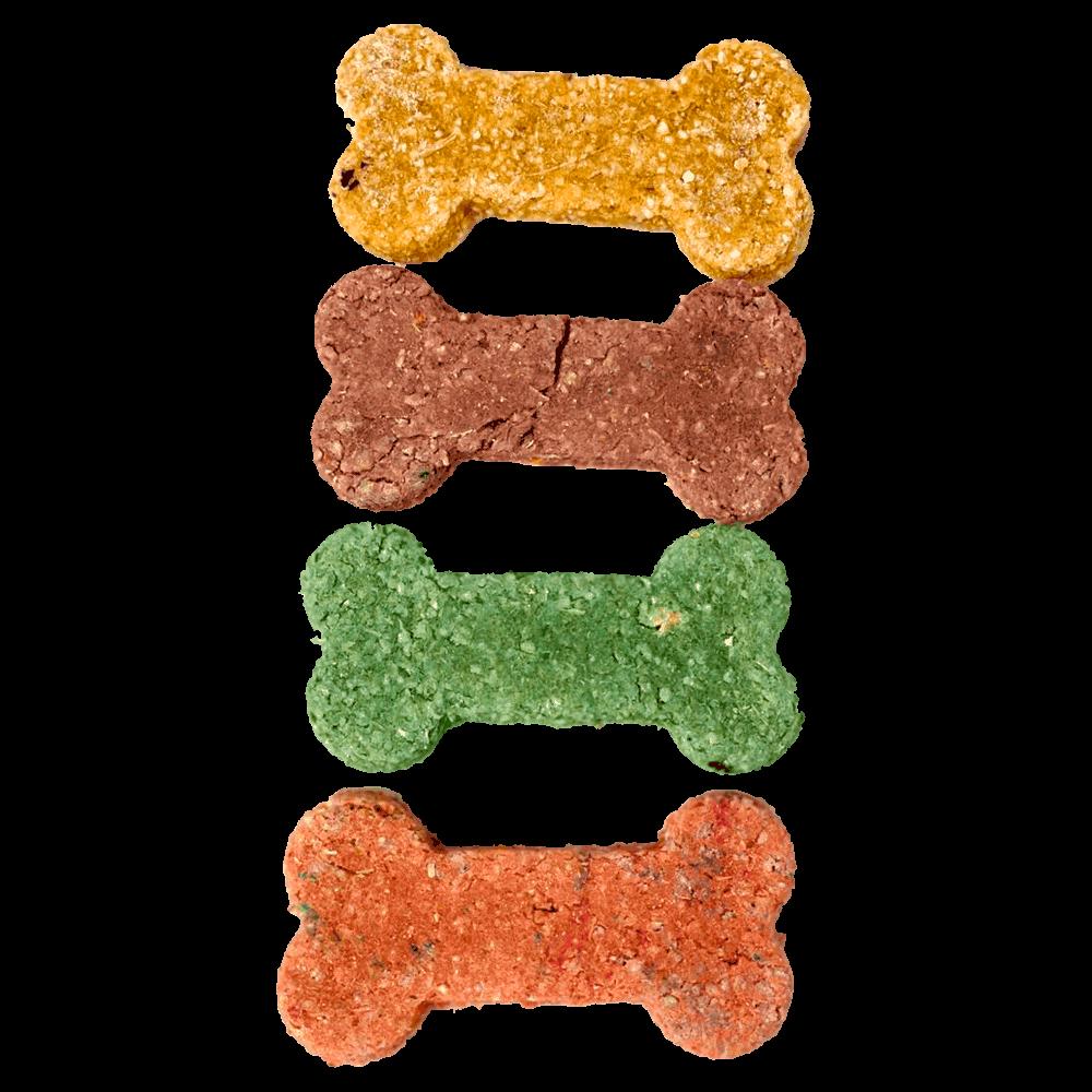 Imagen de Pack de Galletas Pet Bakery con forma de huesito y colores marrón, verde, naranja y amarillo