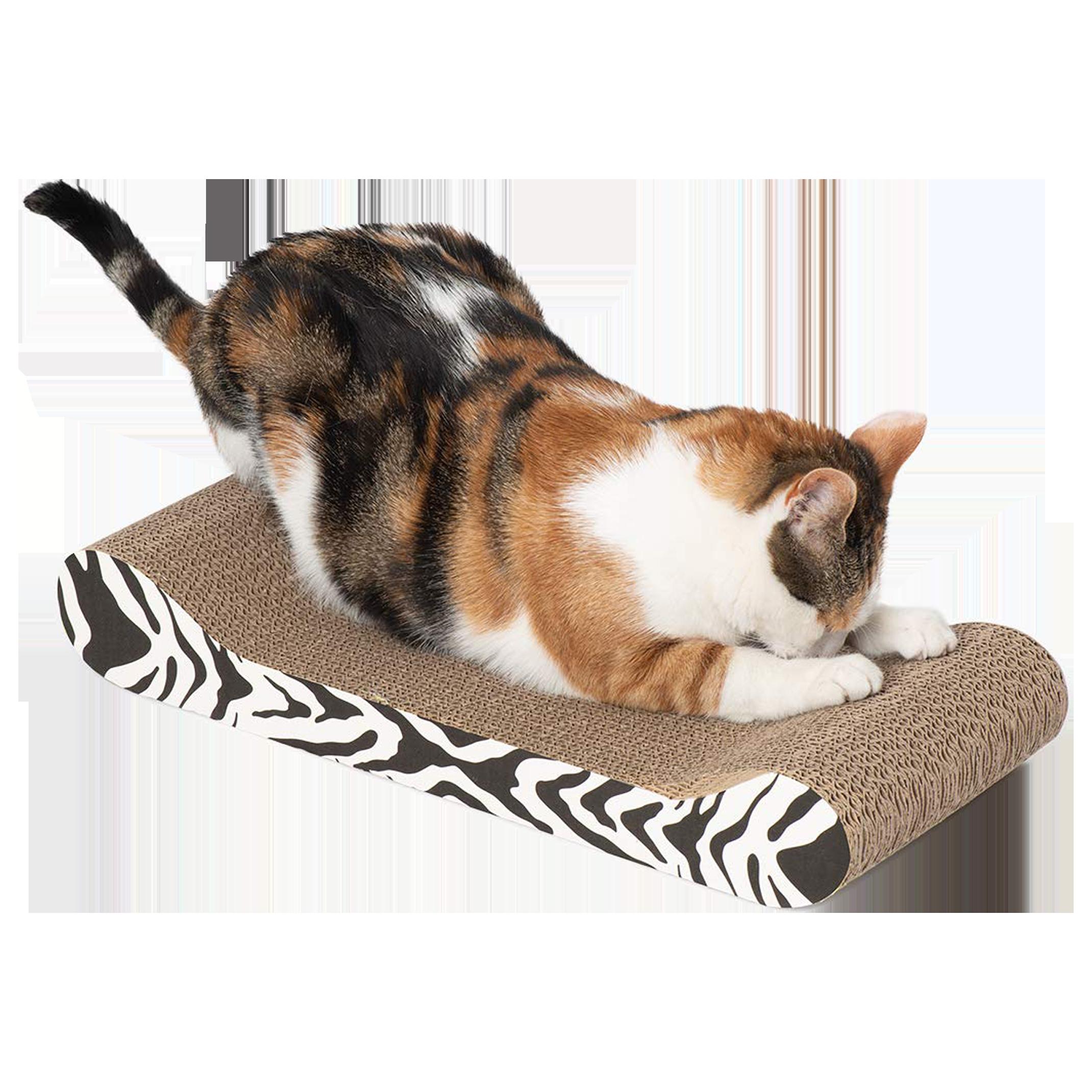 Gato rascando el rascador diván de Rascador Diván Catit Tigre Blanco y Negro