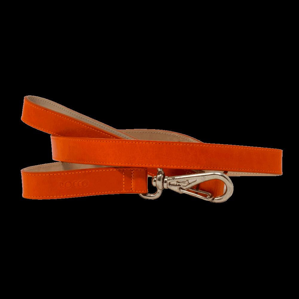 Correa para perro D'Addario Rocco color naranja de talla pequeña