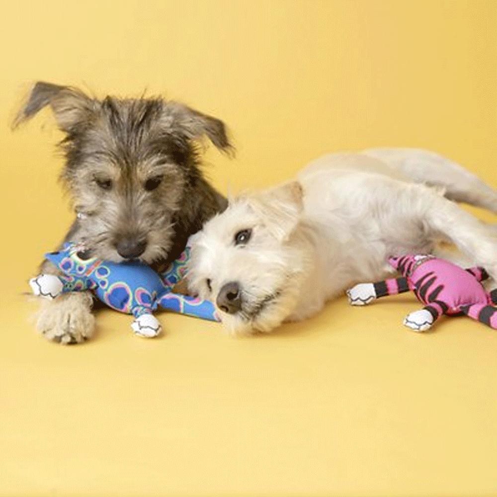 Imagen de perros con Peluche Mini Terrible Nasty Scaries Fat Cat color rosa y azul